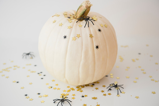 ハロウィン かぼちゃ「Studio shot of pumpkin with halloween decoration」:スマホ壁紙(3)