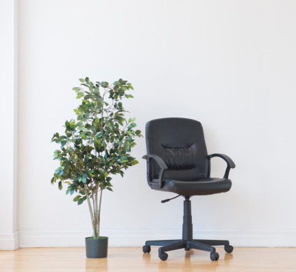 Office Chair「Studio shot of potted plant and office chair」:スマホ壁紙(0)