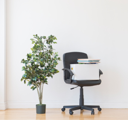 Fig「Studio shot of potted plant and office chair」:スマホ壁紙(6)