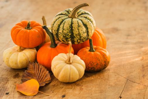 ハロウィン「Studio shot of pumpkins」:スマホ壁紙(6)