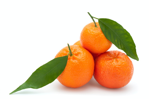 Tangerine「Fresh Tangerines」:スマホ壁紙(17)