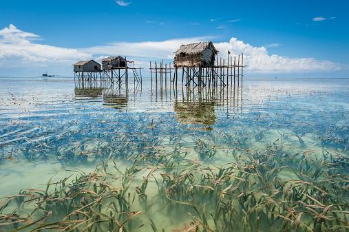 Shallow「Malaysia, Borneo, Sabah, Tawau, Semporna, Stilt huts reflected in sea shoals overgrown with seaweed」:スマホ壁紙(2)