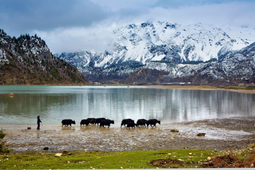 Unrecognizable Person「Tibet,China」:スマホ壁紙(14)