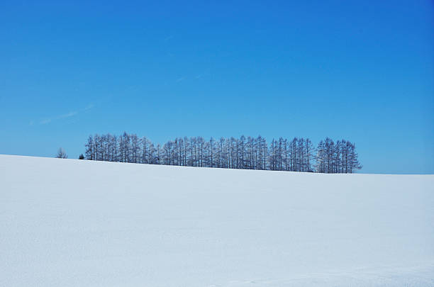 Blue Sky Over Winter Landscape:スマホ壁紙(壁紙.com)