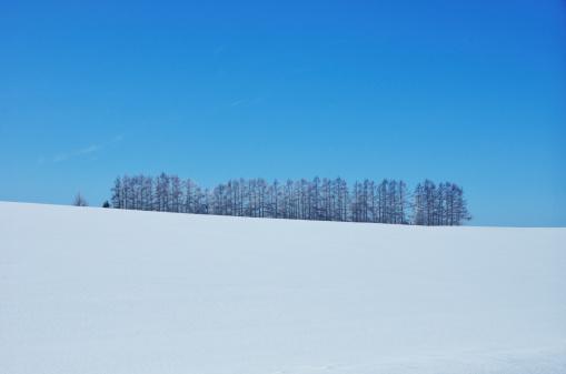 雪「Blue Sky Over Winter Landscape」:スマホ壁紙(4)