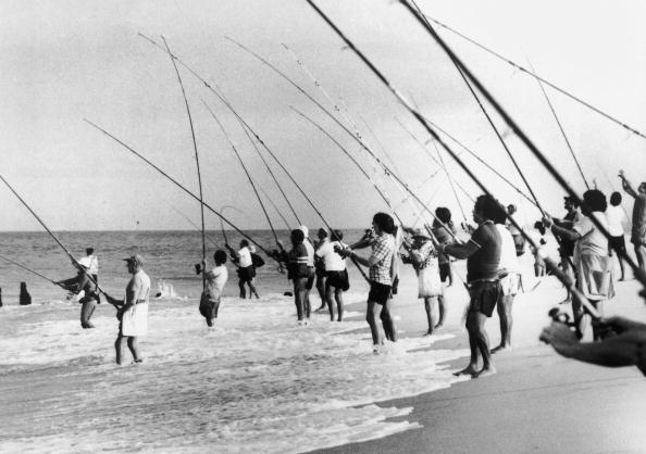 Fishing Rod「Gone Fishing」:写真・画像(11)[壁紙.com]