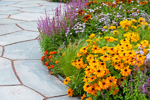 Ornamental Garden「Flowerbed and paving stone slates in summer」:スマホ壁紙(10)