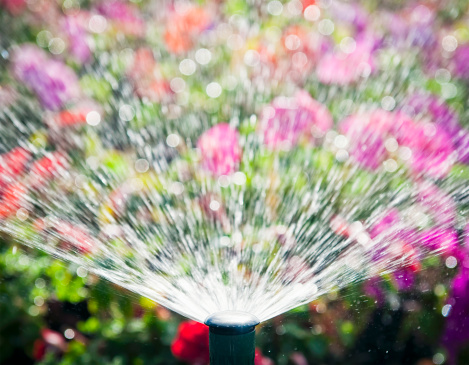 Spraying「Flowerbed Automatic Water Sprinkler」:スマホ壁紙(15)