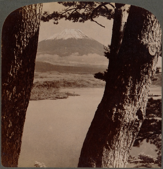 富士山「'Glorious Fuji, Beloved By Artists And Poets, Seen Through Pines At Lake Motosu, Japan', 1904」:写真・画像(3)[壁紙.com]