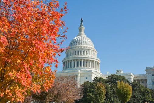 Government Building「fall 2011 at Capitol hill Washington DC」:スマホ壁紙(8)