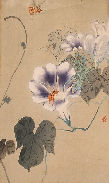 USC Pacific Asia Museum「Morning Glory with two Bees and a large green Preying Mantis」:写真・画像(15)[壁紙.com]