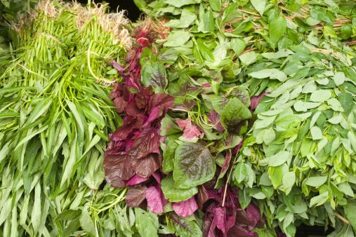 朝顔「Morning glory , birdweed , and Vietnamese spinach」:スマホ壁紙(11)