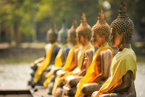 Buddha statue「Seema Malaka Temple in Colombo」:スマホ壁紙(9)
