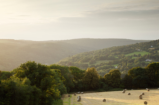 Valley「Field of Hay Bales and hedgerows, trees and wooded hills receding into the distance.」:スマホ壁紙(7)