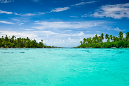 Island「Taha'a Island Exotic Lagoon South Pacific」:スマホ壁紙(10)