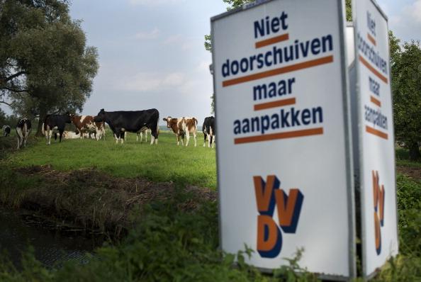 Utrecht「Dutch Prepare For Elections」:写真・画像(16)[壁紙.com]