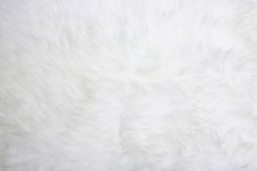 動物の毛「ホワイトのファー」:スマホ壁紙(0)