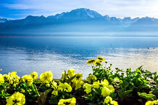 Vaud Canton「Lakeshore of Lake Geneva Near Montreux - Vaud - Switzerland」:スマホ壁紙(10)