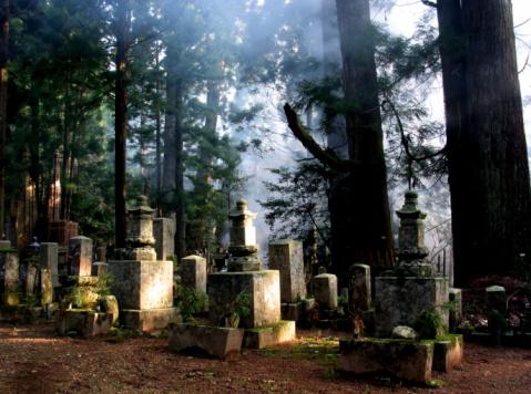 Family Tree「Creepy old Buddhist cemetery at Mt. Koya in Japan」:スマホ壁紙(6)