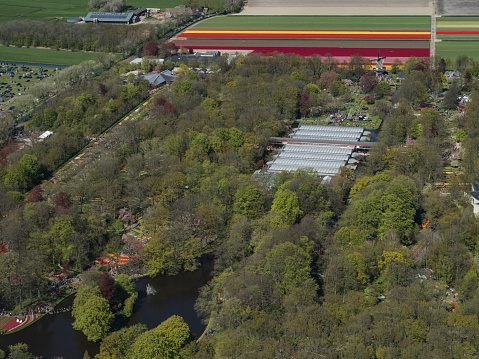 Keukenhof Gardens「Keukenhof in the Netherlands, Aerial view」:スマホ壁紙(5)