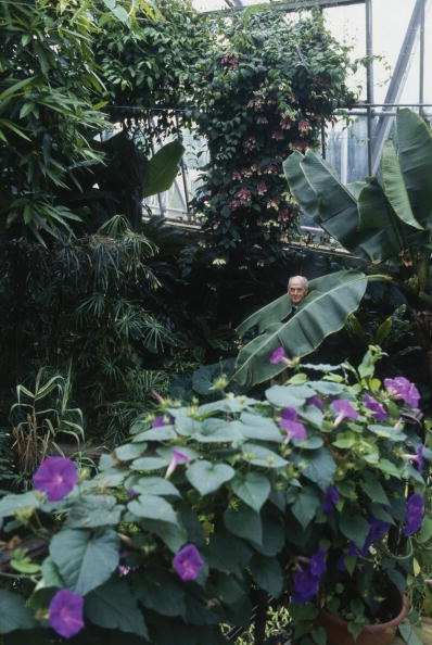 Greenhouse「Chatsworth Greenhouse」:写真・画像(8)[壁紙.com]