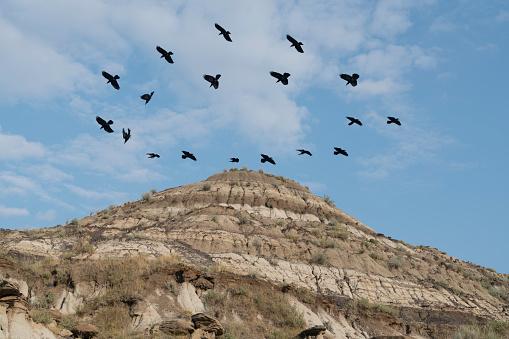 雲「Crows circle overhead badlands」:スマホ壁紙(9)