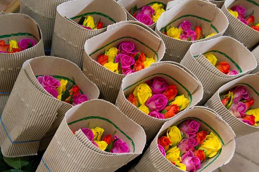 Fair Trade「Kenya, fair trade cultivation of roses」:スマホ壁紙(9)