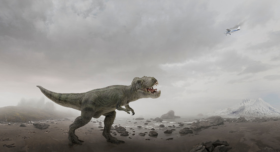 Furious「Airplane flying over dinosaur in rocky field」:スマホ壁紙(3)