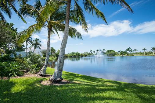 Sea「Florida, Naples, Residential Community」:スマホ壁紙(7)