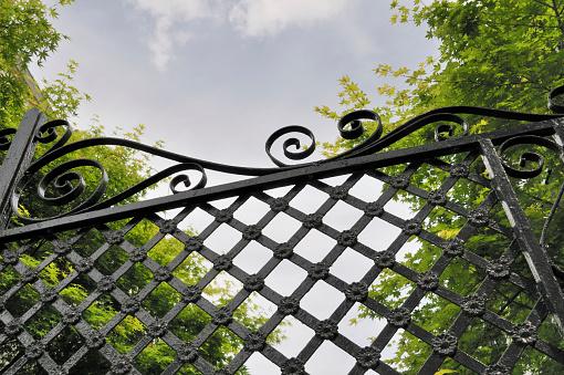Charleston - South Carolina「Wrought Iron Gate, Charleston, South Carolina」:スマホ壁紙(16)