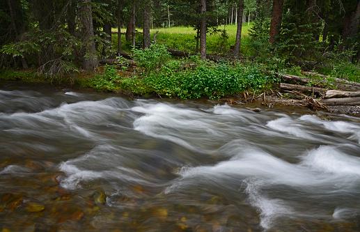 アンコンパグレ国有林「USA, Colorado, Ridgway, Fast flowing stream in Uncompahgre National Forest」:スマホ壁紙(3)