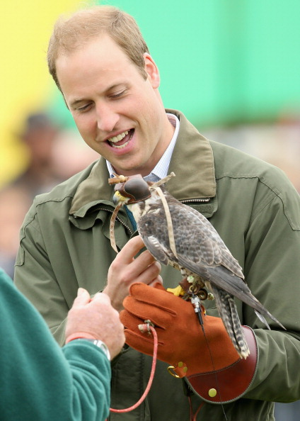 Animals Hunting「Prince William, Duke Of Cambridge Visits The Anglesey Show」:写真・画像(16)[壁紙.com]