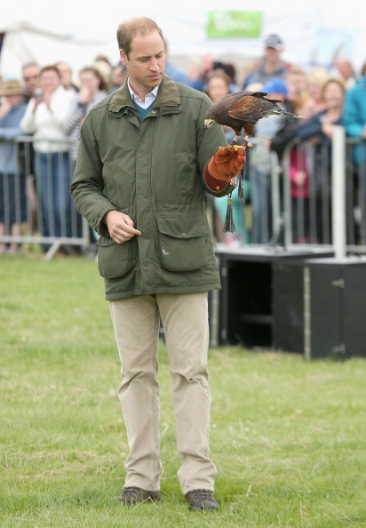 Animals Hunting「Prince William, Duke Of Cambridge Visits The Anglesey Show」:写真・画像(18)[壁紙.com]