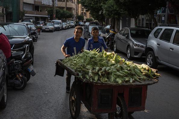 Lebanon - Country「Pro And Anti Government Protests Continue  In Lebanon」:写真・画像(17)[壁紙.com]