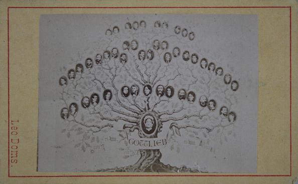 1870-1879「Family Tree Gottlieb. 24Th June 1791 - 24Th June 1871. About 1873. Photograph By Leo Doms / Vienna [Leopoldstadt / Taborstr. 1 Nearest The Ferdinand Bridge].」:写真・画像(2)[壁紙.com]