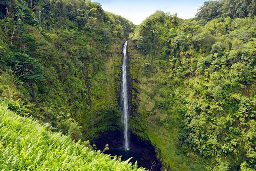 Akaka Falls「USA, Hawaii, Big Island, Honomu, Akaka Falls」:スマホ壁紙(4)