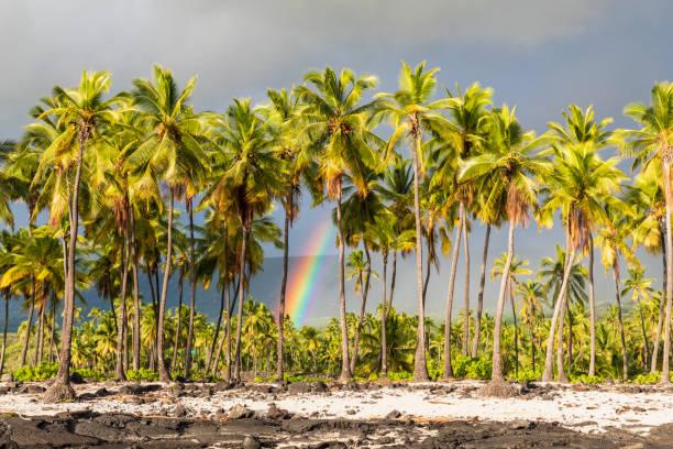 USA, Hawaii, Big Island, Pu'uhonua o Honaunau National Park:スマホ壁紙(壁紙.com)