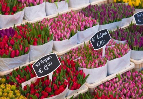 Amsterdam「Tulips for sale, Amsterdam」:スマホ壁紙(18)