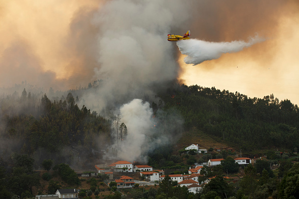 Portugal「Dozens Dead In Forest Fire In Portugal」:写真・画像(16)[壁紙.com]