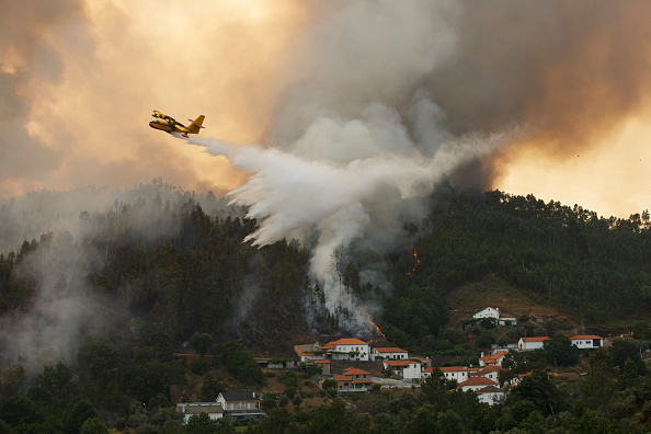 Portugal「Dozens Dead In Forest Fire In Portugal」:写真・画像(15)[壁紙.com]