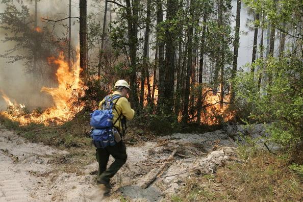 Steve Wood「Wildfires Burn On Florida-Georgia Border」:写真・画像(13)[壁紙.com]
