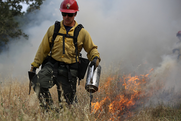 Grass「Cal Fire Conducts Controlled Burn In Sonoma Valley」:写真・画像(18)[壁紙.com]