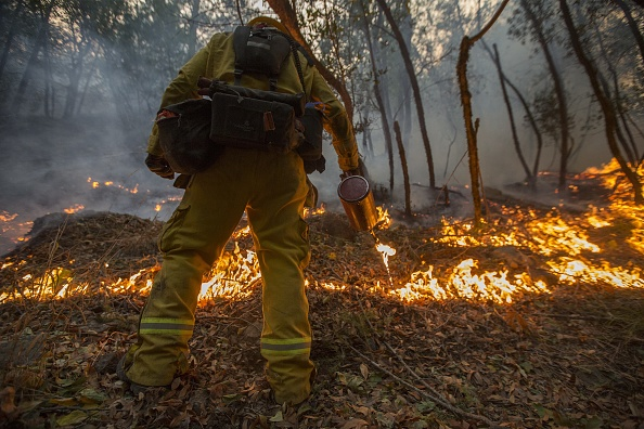 California「Multiple Wildfires Continue To Ravage Through California Wine Country」:写真・画像(10)[壁紙.com]