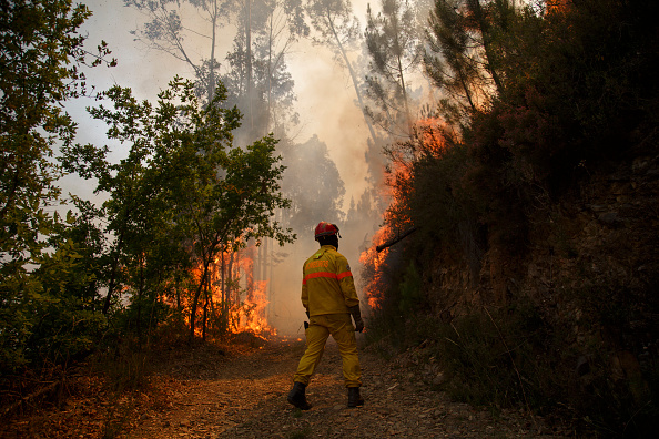 Portugal「Dozens Dead In Forest Fire In Portugal」:写真・画像(17)[壁紙.com]