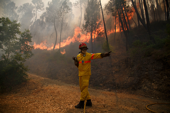 Portugal「Dozens Dead In Forest Fire In Portugal」:写真・画像(12)[壁紙.com]