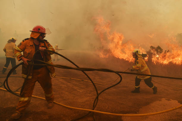 Bushfires Continue To Burn Across NSW As Catastrophic Fire Conditions Ease:ニュース(壁紙.com)