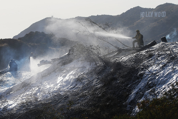 Hollywood - California「Brush Fire Breaks Out In L.A.'s Griffith Park」:写真・画像(11)[壁紙.com]