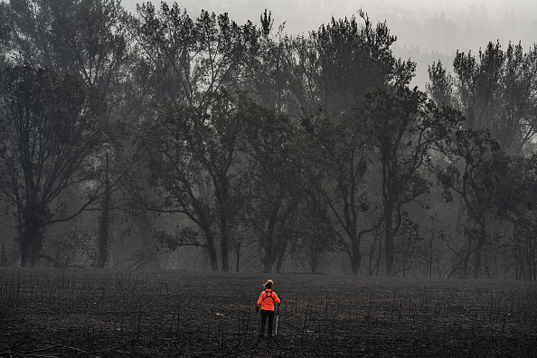 Topix「Almeda Fire Burns Through Southwestern Oregon」:写真・画像(6)[壁紙.com]
