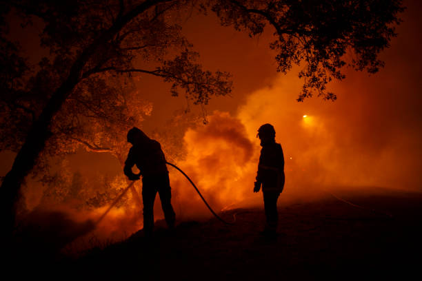 Portugal「Dozens Dead As Wildfires Spread Across Northern Spain And Portugal」:写真・画像(6)[壁紙.com]