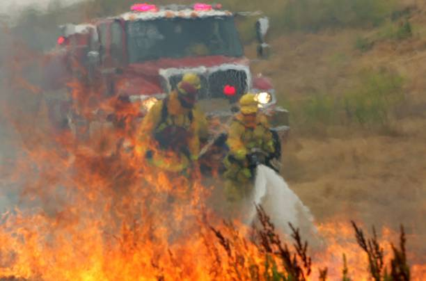 Northern California County Fire Department Conducts Wildfire Training Drill:ニュース(壁紙.com)